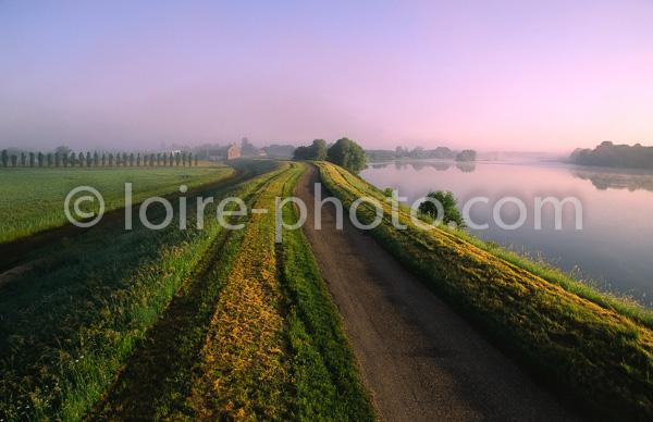 images de Loire - La loire